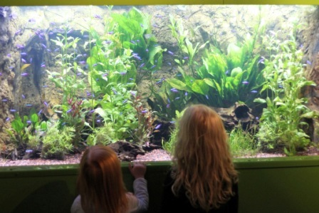 compressed freshwater tank