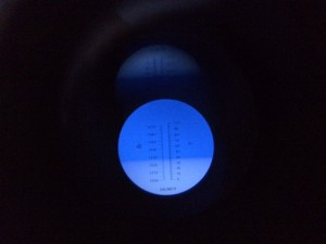 how to read a refractometer
