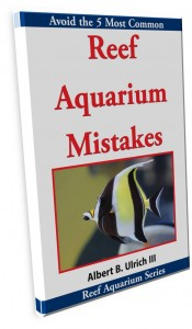 Reef Aquarium Mistakes