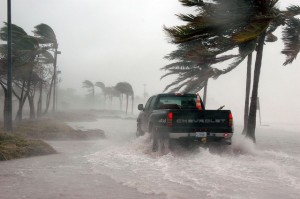 hurricanes cause aquarium power outtages