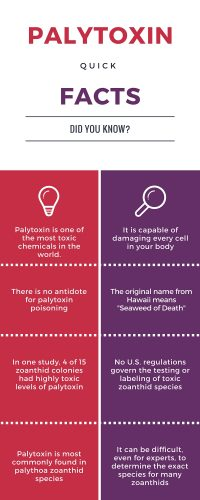 palytoxin quick facts