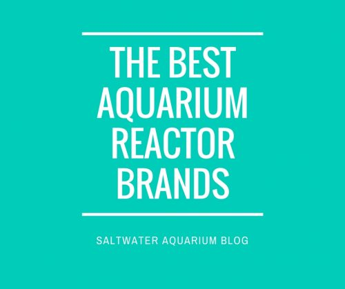 best aquarium reactor brands