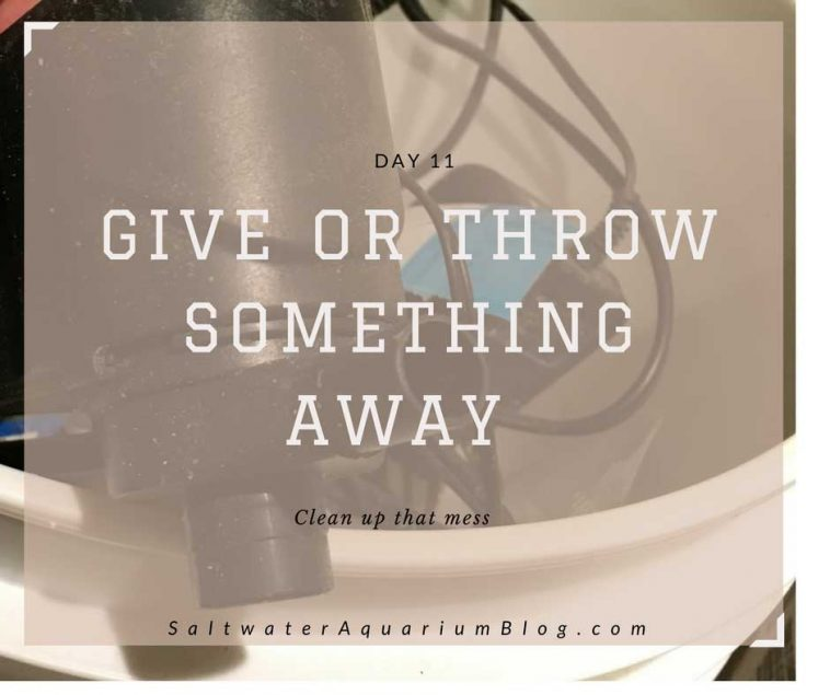 give or throw something away